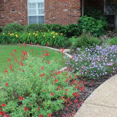 Sustainble Landscaping Services in Frisco, Texas